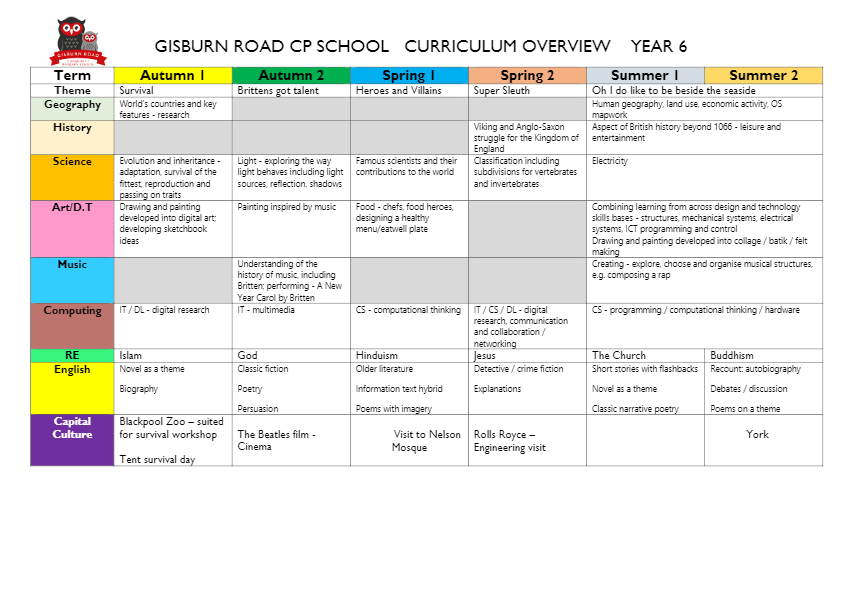 curriculum overview year 6-thumbnail